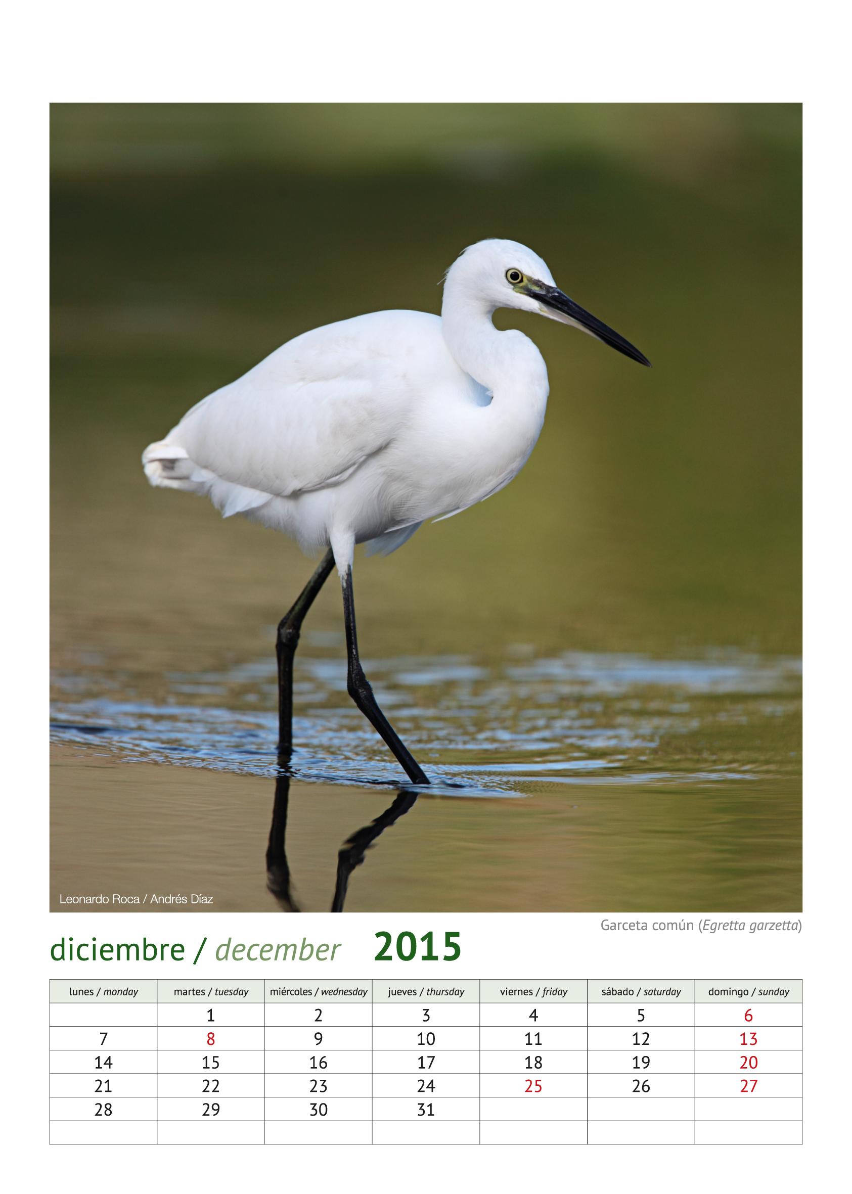 calendario aves_2015_13