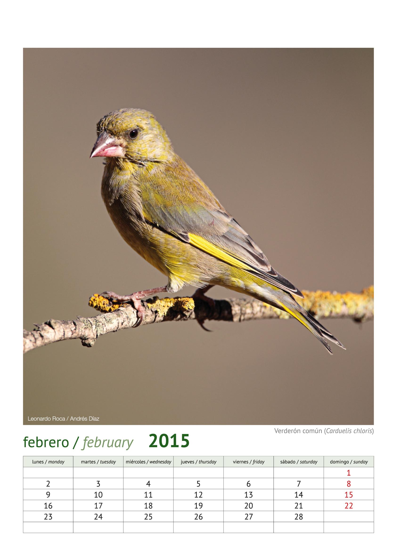 calendario aves_2015_3