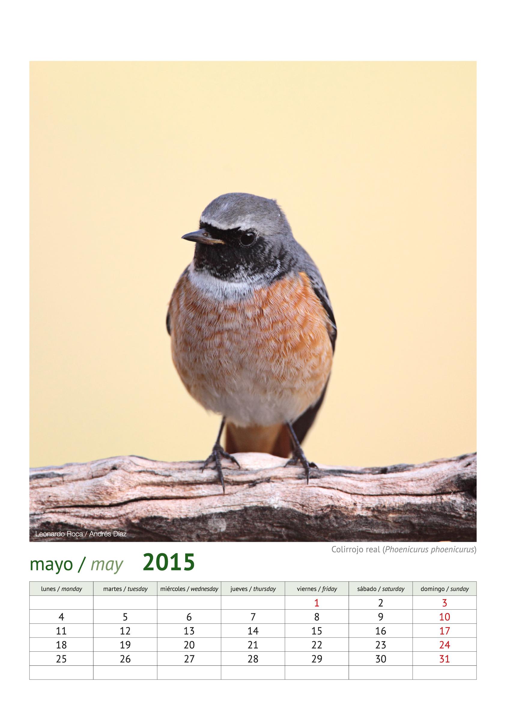 calendario aves_2015_6