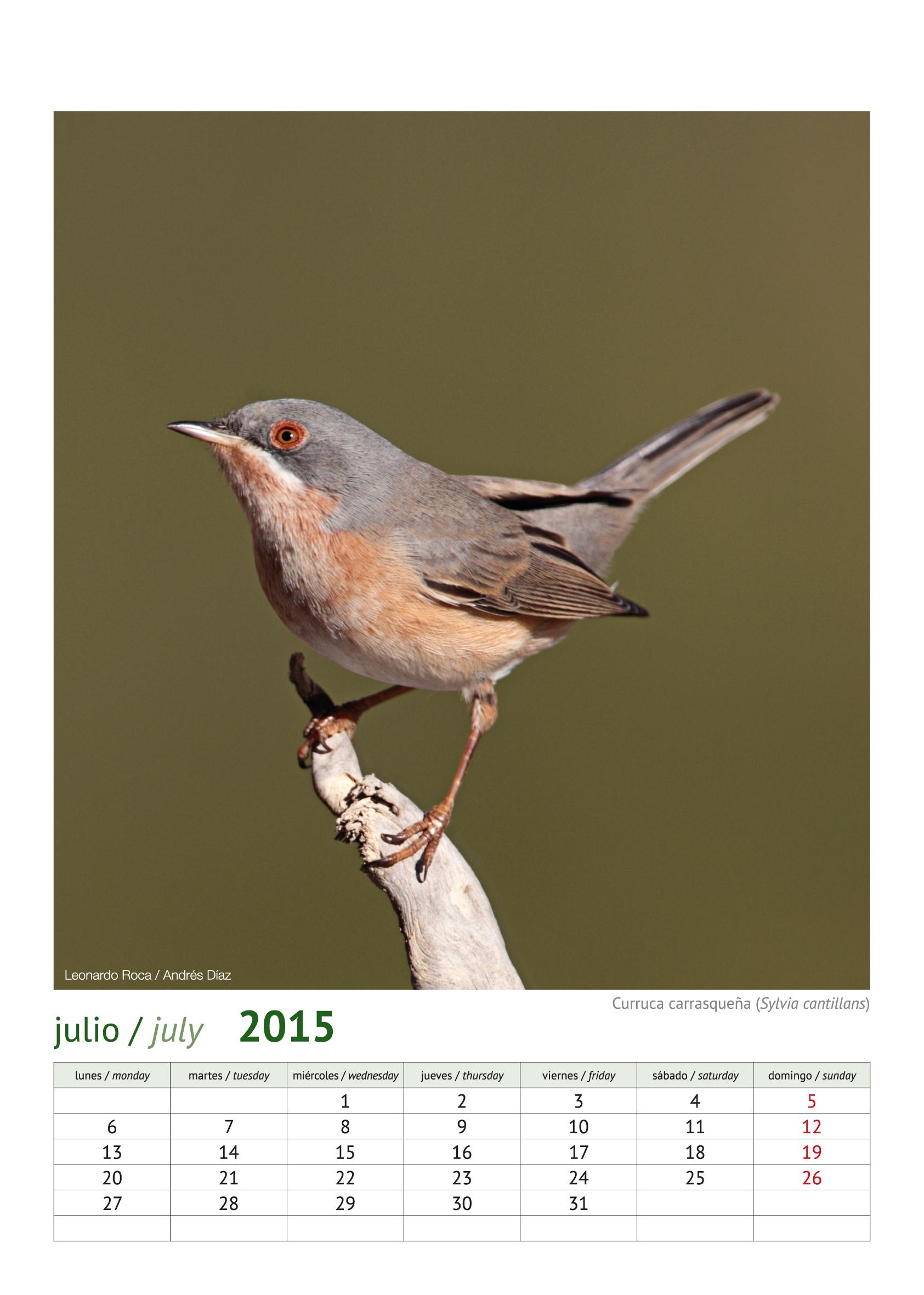 calendario aves_2015_8