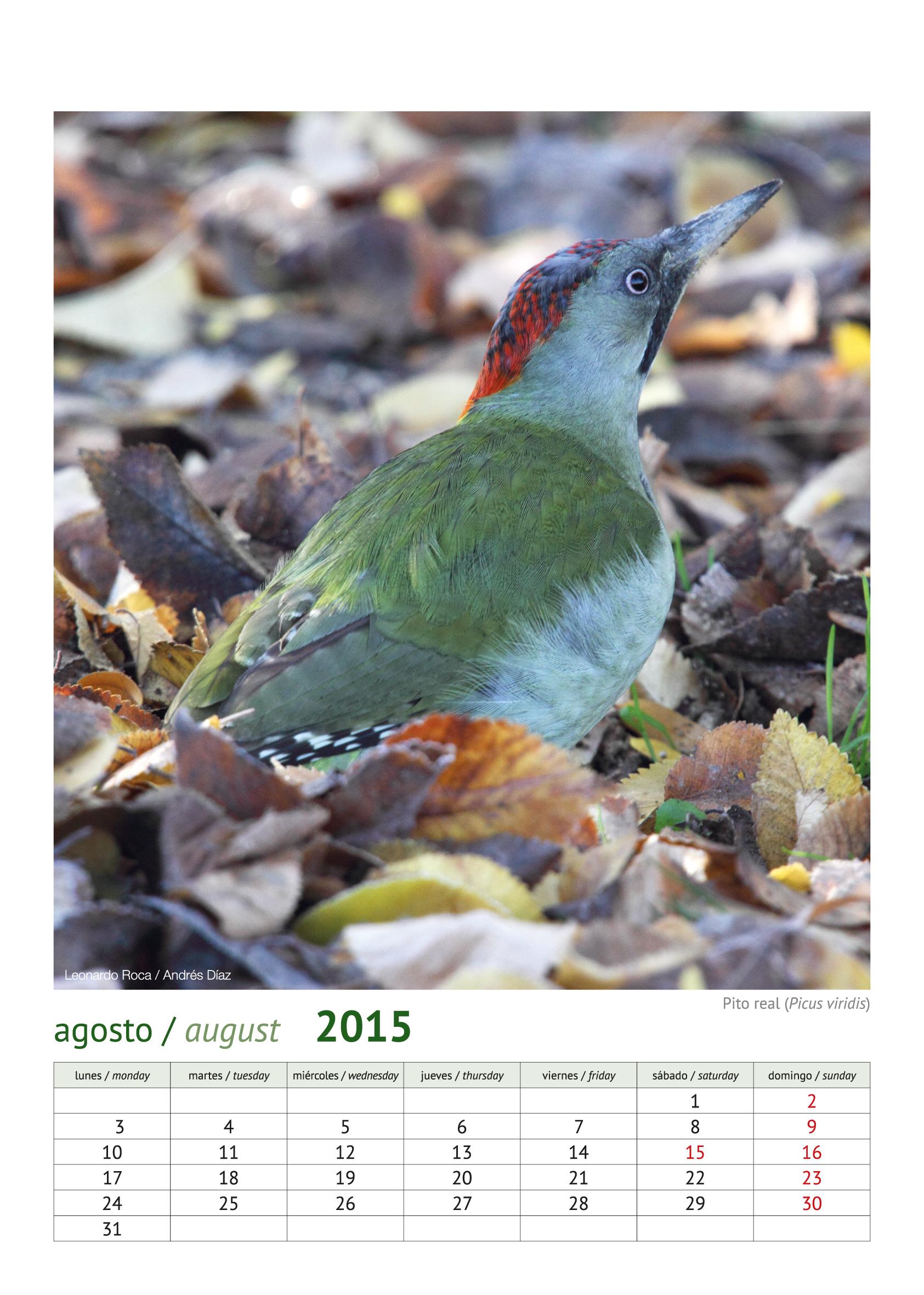 calendario aves_2015_9
